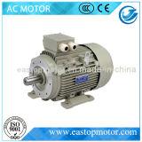 Мотор индукции эффективности Ie2 для индустрии с 200kw (IE2- 315L2-2)