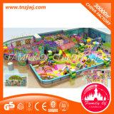 Het plastic Ongehoorzame Kasteel van de Speelplaats van de Apparatuur van het Labyrint Binnen