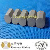 Bit Drilling de núcleo do carboneto de Supplys da fábrica de Zhuzhou para equipamentos de Driling