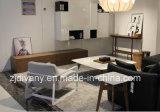 Софа европейской ткани комнаты типа живущий одиночная (D-81)