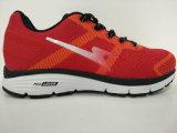 Ботинки высокого качества способа красные идущие