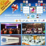 Custos de transporte do recipiente do oceano FCL/LCL de Shenzhen/Shanghai/Guangzhou/Ningbo a Felixstowe Reino Unido