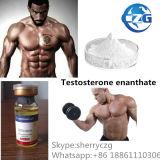 Testoterone Enanthate dell'ormone steroide di supplemento di Bodybuilding di Te