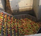 Automatische Fruit Juice Processing Line (draai zeer belangrijk project)