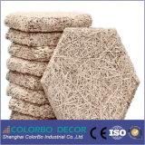 Los paneles de pared acústicos de Nterior del cemento de la fibra de las lanas de madera del aislante sano