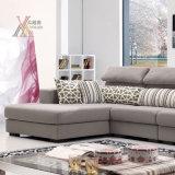 Il sofà del tessuto del salone ha impostato con il Chaise (6030D)