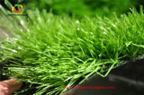 Kids를 위한 편리한 Kindergarten Artificial Grass