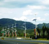 60W Wind en Solar Hybrid Street Light