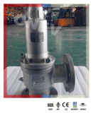 보일러 NPT/RF Pressure Safety Relief Valve (250mm WCB/CF8/304)