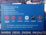 Ruilmiddel 612600140025 van Steyr Wd615 van de Dieselmotor van Weichai