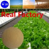 Gemüsequellaminosäuren 40%-60%-80% mit 18 Arten Aminosäure