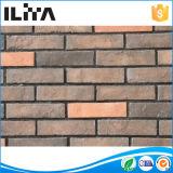 Mattonelle artificiali del mattone del materiale da costruzione per il rivestimento della parete (YLD-20010)