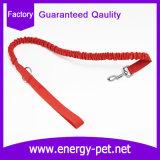 歩き、ハイキングのために適したナイロン犬のバンジーの鎖