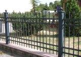 Frontière de sécurité en acier galvanisée par noir d'usine d'OEM pour le jardin et le paquet