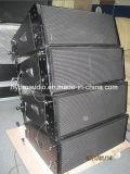 De professionele Serie van de Lijn van de Serie van de Lijn 6.5inch van de Spreker Ds2065 Dubbele Mini