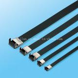 Aile L&#160 de l'épaisseur 0.3mm ; Verrouiller le serre-câble de solides solubles dans l'usine
