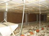 養鶏場のためのクラフト紙水蒸気化冷却のパッド