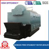 La biomassa di grande capienza ha infornato il generatore di vapore impaccato