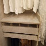 Het Kabinet van de Garderobe van het Meubilair van de slaapkamer