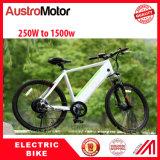 Электрический Bike Ebike MTB электрический