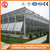 Estufa do vidro do jardim de Venlo da indústria da horticultura