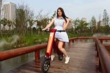 Neues Entwurfs-elektrisches Fahrrad-faltbares zwei Rad-elektrisches Fahrrad