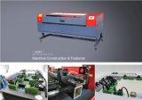 Machine de gravure de grande précision de découpage de laser de Jsx 1290 chauds de vente