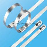 Ss van de Gesp van de Stijl van de ring de Epoxy Met een laag bedekte Band van de Kabel met Lengte 150mm/250mm/350mm/450mm