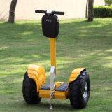 Wind Rover Power Scooter Scooter électrique pour adultes