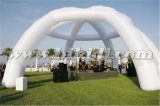屋外の白く膨脹可能な結婚式はドームのテントK5118をアーチ形にする