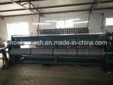 Het Gegalvaniseerde Kippegaas van Sailin Fabriek met ISO