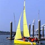 barco de navigação de 21FT FRP
