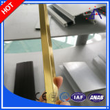 고품질 건축 알루미늄 또는 알루미늄 밀어남 단면도