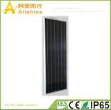 50W 베스트 셀러 LED 고열에 있는 태양 가로등 일요일 가벼운 옥외 벽 가벼운 작업