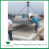 Scale concrete del camion di Scs100tons Digitahi (3X12m)