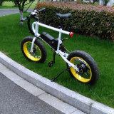 Le ce d'Aimos a reconnu la bicyclette électrique de 20 pouces