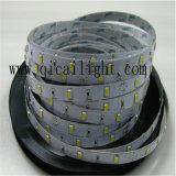 고성능 좋은 가격 5630 Samsung 또는 Epistar LED 지구