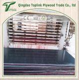 Bueno 5 mm de fábrica comerciales Plywod / 9mm Commercialplywood / 18mm Madera contrachapada comercial con álamo / Madera