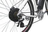 ハブモーターリチウム電池の電気自転車