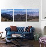 Домашняя картина маслом холстины нестандартной конструкции печатание Giclee искусствоа стены украшения от фотоего цифров