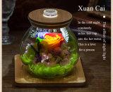 Verse Bloemen van de Fles van de Wens van Ivenran de Lichtgevende voor de Creatieve Gift van de Decoratie van de Verjaardag