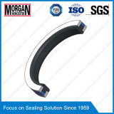 Spgw / Phd / Y3 / L27 / Cst Type Hydraulic Cylinder Piston Seal