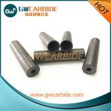 Изготовленный на заказ сталь, сопла карбида вольфрама нефть и газ Drilling