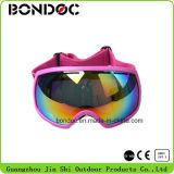 Lentille de femmes de qualité la grande folâtre des lunettes de ski