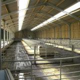 Vorfabrizierte Baustahl-Ziege verschüttete für Verkauf