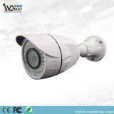 1080P CCTV IP 야간 시계 통신망 사진기