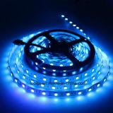 luz de tira brillante estupenda de la anchura 12V 5050 RGB LED de 10m m