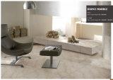 Mattonelle di pavimentazione di marmo e mattonelle di progetto dell'appartamento