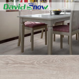 Pavimentazione della pavimentazione/PVC di formazione/pavimentazione dello strato