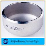 Protezione di estremità del tubo dell'acciaio inossidabile di alta qualità